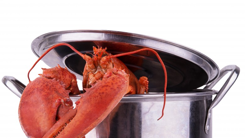 how to cook lobster in instant pot