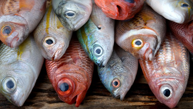 7 types of seafood you should be eating and 7 you shouldn't