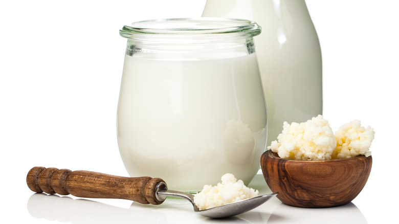 fermenting milk with kefir grains