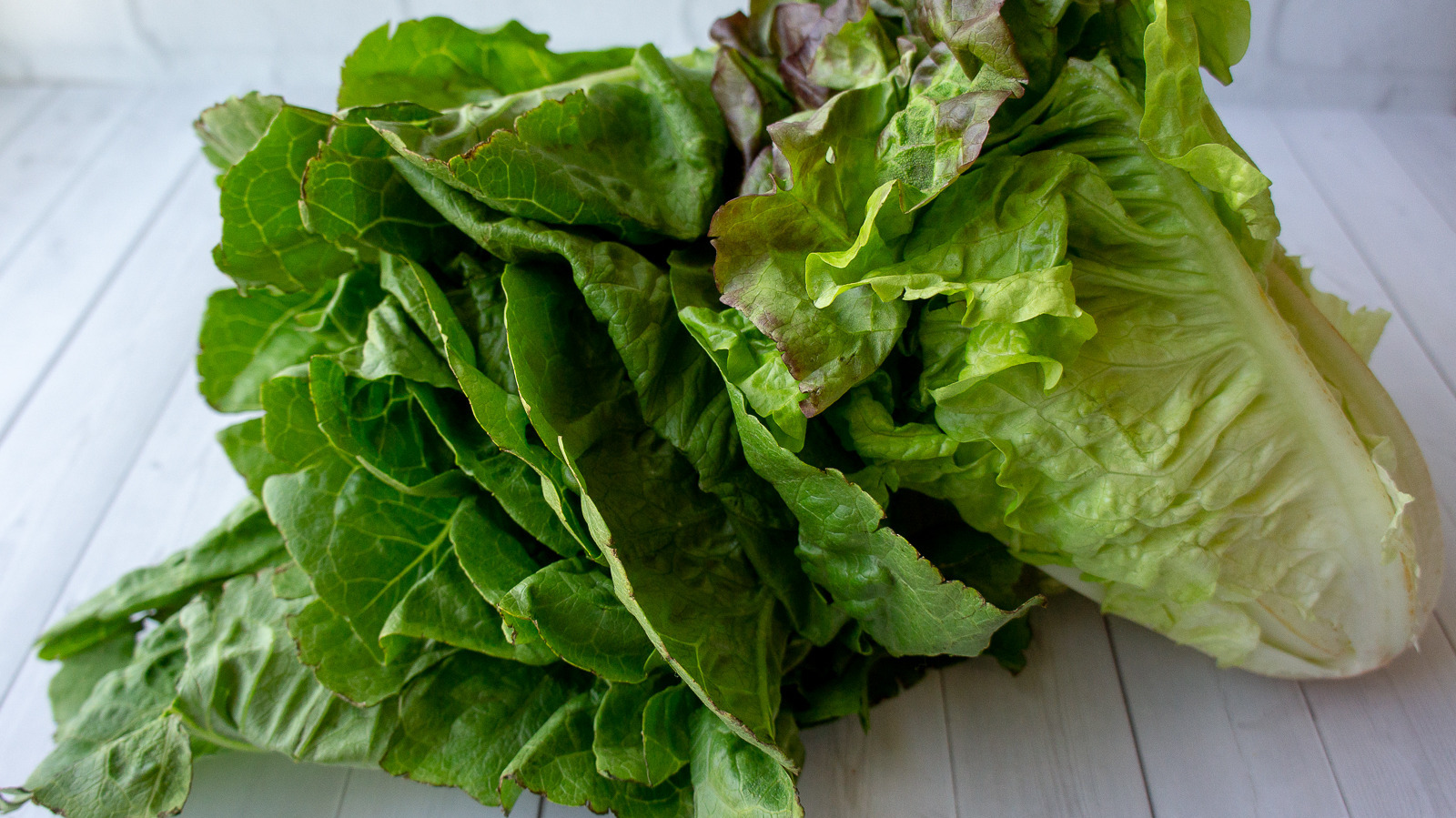 How To Wash Lettuce