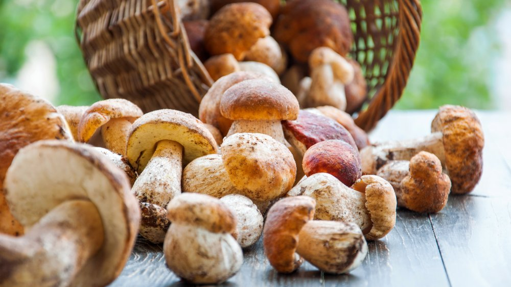 The biggest mistakes you can make while cooking mushrooms